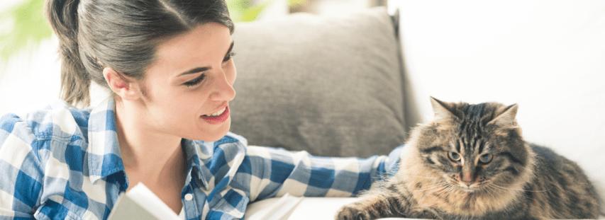 visite de chat par un cat sitter