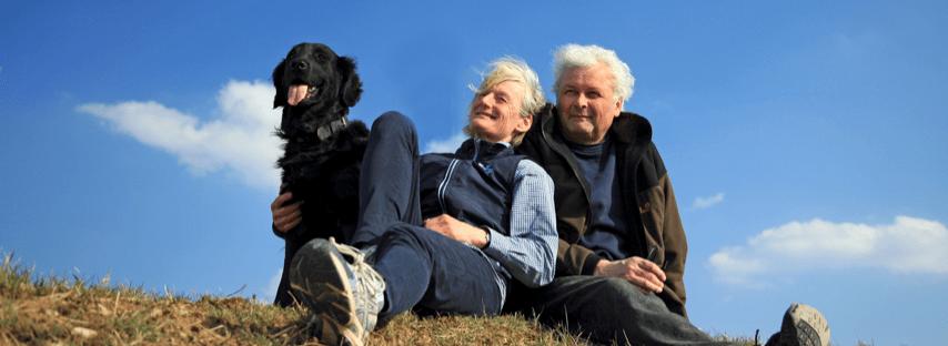 chien-et-petsitters-a-la-campagne