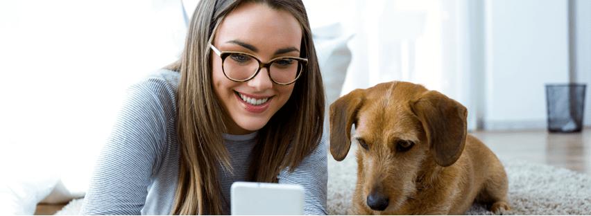 chien gardé à domicile par son dog sitter