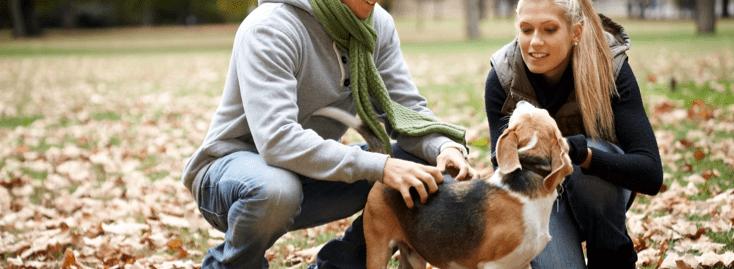petsitters-et-chien-sur-une-promenade